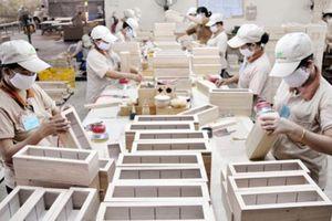 Giải 'bài toán' khó nguyên liệu cho ngành chế biến gỗ