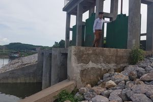 Quảng Ninh: Nhiều giải pháp ứng phó với biến đổi khí hậu