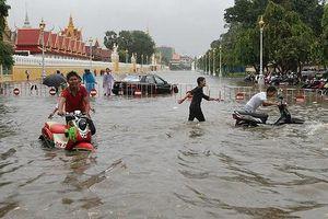 46 người chết, 97 người mất tích do lũ lụt tại Lào