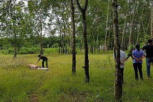 Kinh hoàng: Vứt xác người chết vào vườn hàng xóm để vu oan