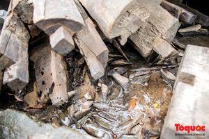 Hình ảnh ngôi Đình cổ 300 tuổi bị bê tông hóa thành 1 ngày tuổi đang chờ khắc phục