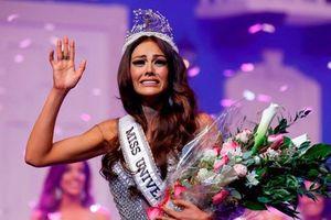 4 nhan sắc bị tước quyền thi hoa hậu quốc tế