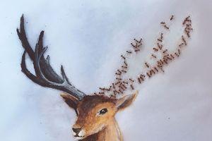 Nữ họa sĩ 'nhờ' đàn kiến tạo nên các bức tranh đầy nghệ thuật