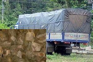 Bắt xe tải vận chuyển hơn 1 tấn gỗ trắc qua địa bàn Quảng Nam