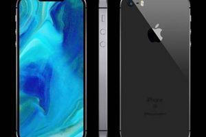 'Hậu duệ' iPhone SE chính là chiếc iPhone 6.1 inch, chắc chắn giá rẻ