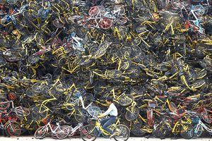 Xe đạp dùng chung: Cơn sốt đã hạ nhiệt?