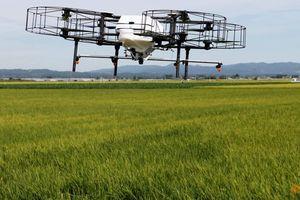 Nhật Bản dùng máy bay không người lái giúp nông dân già yếu
