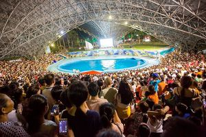 Miễn phí vé vào khu vui chơi, đảo Tuần Châu chật cứng người