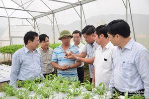 Nghệ An chia sẻ kinh nghiệm xây dựng nông thôn mới với tỉnh Sơn La