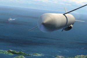 Nga chuẩn bị tìm tên lửa Chim báo bão bị rơi xuống biển