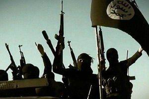 IS thừa nhận tiến hành vụ tấn công bằng dao điên cuồng ở ngoại ô Paris