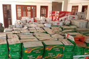 Đắk Nông: Bắt giữ hơn 10 tấn trái cây ngoại nhập không nhãn mác