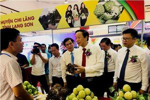 Khai mạc Hội chợ sản phẩm an toàn, được bảo hộ chỉ dẫn địa lý và Tuần lễ na Lạng Sơn 2018