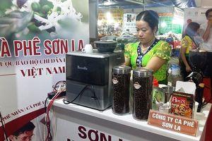Cà phê Sơn La được quảng bá tại Hà Nội