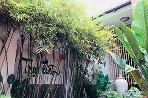 Quán chay đánh thức mọi giác quan của bạn giữa lòng Sài Gòn