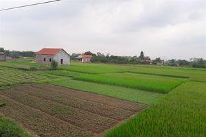 Xã Đạo Đức- điểm nóng vi phạm đất nông nghiệp