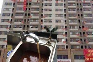 'Tối hậu thư' cho chủ đầu tư khu đô thị Tân Tây Đô