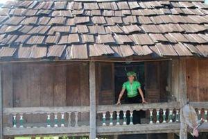 Vùng đất những ngôi nhà sàn cổ xưa thơm sực nức mùi gỗ pơ mu