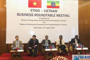 Việt Nam thúc đẩy đầu tư tại châu Phi
