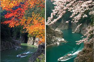 Tận thấy những cảnh đẹp có 1 0 2 tại Wakayama, Nhật Bản