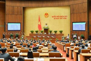 Quốc hội chưa xem xét Luật đặc khu tại kỳ họp cuối năm