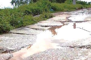 Sớm khắc phục tình trạng xuống cấp mặt đê hữu sông Chu đoạn qua xã Xuân Thành