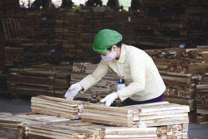 Để hạn chế số vụ tai nạn lao động nghiêm trọng