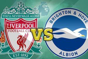 Liverpool vs Brighton, vòng 3 Premier League: lối đi nào cho tân binh?