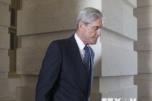 Dùng công cụ pháp lý bất thường điều tra Nga can thiệp bầu cử Mỹ
