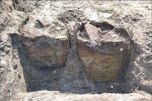 Sử dụng thùng rượu làm nhà vệ sinh thời Phục Hưng