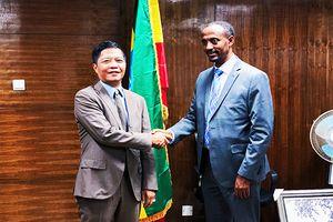 Việt Nam – Ê-ti-ô-pi-a: Thống nhất ký MOU về thương mại và công nghiệp
