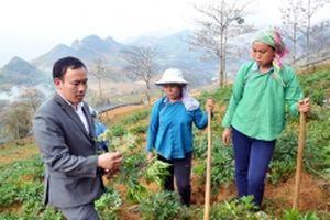Nâng cao hiệu quả công tác kiểm tra, giám sát ở Lào Cai