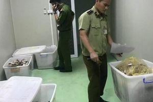 Mỹ phẩm Ngọc Tú bị xử phạt hơn 170 triệu đồng với 6 lỗi vi phạm