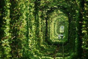 Đường hầm tình yêu
