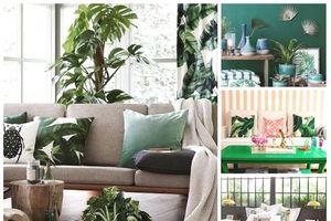 Năm xu hướng thiết kế căn hộ chung cư 'hot' năm 2018