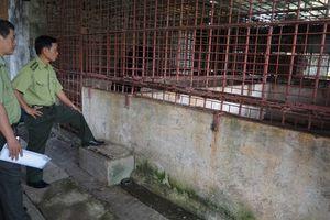 Tiền Giang: Không còn gấu nuôi nhốt tại cơ sở tư nhân