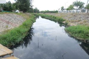 Đà Nẵng: Hơn 10 năm sống chung với dòng kênh ô nhiễm