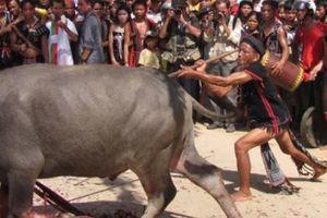 Chủ tịch thị xã lên tiếng việc buộc dân đóng tiền lễ hội đâm trâu