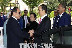 Ai Cập mong muốn phát triển quan hệ với Việt Nam