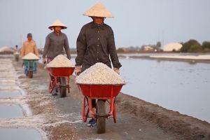 Huyện Long Điền (Bà Rịa - Vũng Tàu) phấn đấu đến năm 2020 đạt chuẩn nông thôn mới