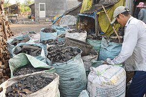 Ô nhiễm ở làng nghề hầm than