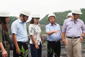 TKV chung tay chủ động ứng phó biến đổi khí hậu