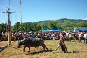 Xã yêu cầu dân góp tiền tổ chức lễ hội đâm trâu