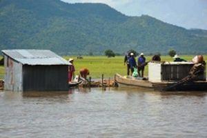 Vỡ đê bao hàng trăm ha lúa ở An Giang bị thiệt hại nặng