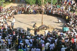 Thừa Thiên-Huế: Xã nghèo thu mỗi hộ dân 300 nghìn phục vụ lễ hội đâm trâu