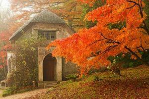 Lãng mạn như ngắm cảnh mùa thu ở Cornwall