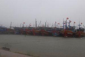 Quảng Trị: Xây dựng hệ thống cơ sở dữ liệu TN&MT biển, đảo