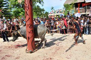 Dân bức xúc việc xã nghèo bắt đóng 300 nghìn đồng để tổ chức lễ hội đâm trâu