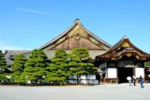 Khám phá lâu đài samurai hấp dẫn nhất Nhật Bản