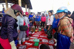 Thừa Thiên Huế: Sản lượng khai thác thủy sản 6 tháng đầu năm đạt 19.987 tấn